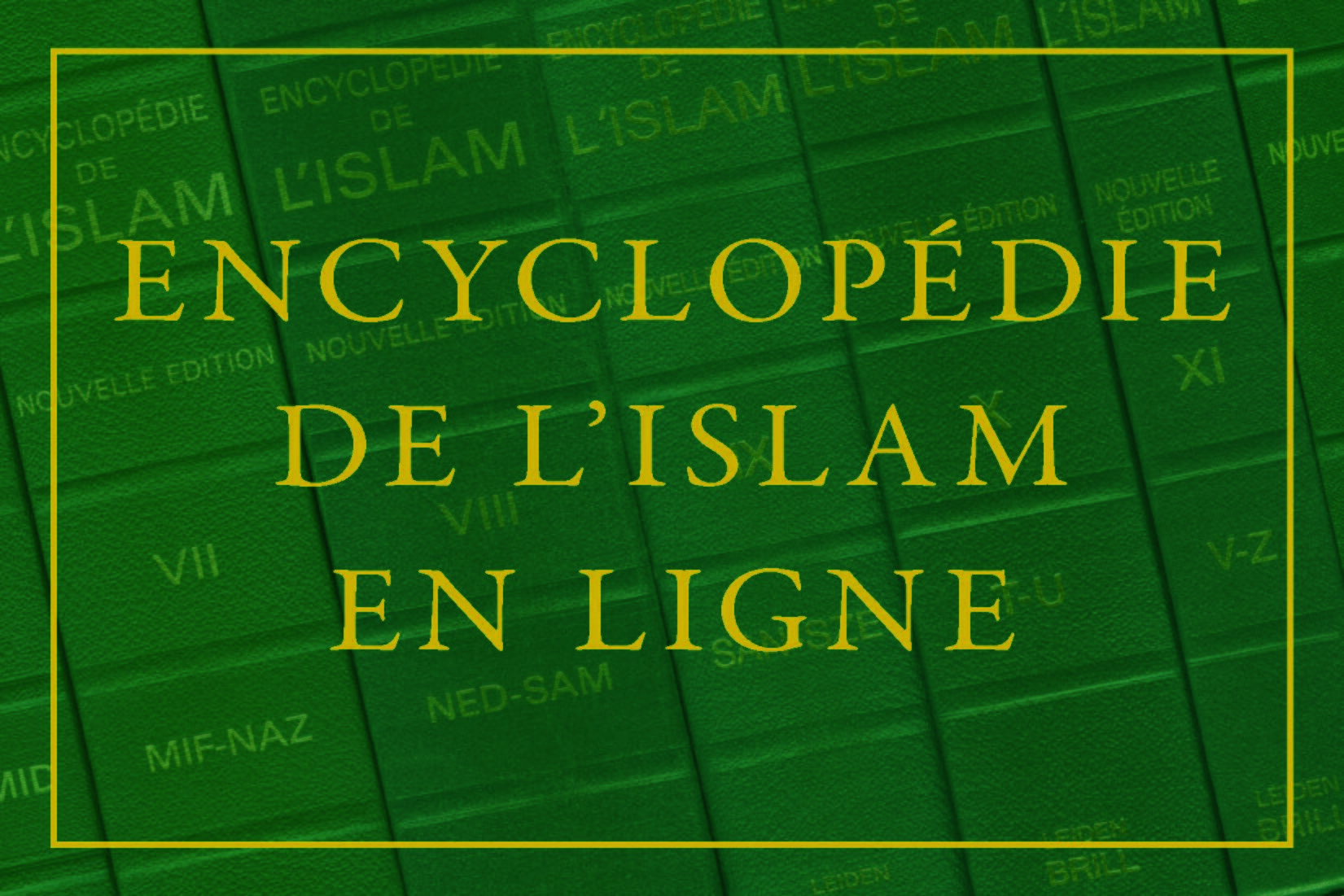 Image result for Encyclopedia of Islam