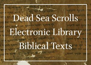 Cover Dead Sea Scrolls Electronic Library Biblical Texts