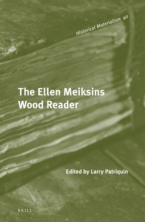 Cover The Ellen Meiksins Wood Reader