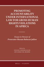 Cover Promoting Accountability under International Law for Gross Human Rights Violations in Africa