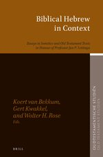 Cover Biblical Hebrew in Context