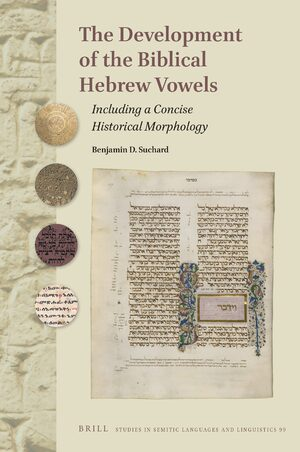 The Development of the Biblical Hebrew Vowels