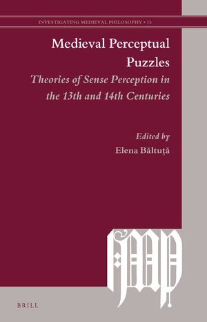 Cover Medieval Perceptual Puzzles