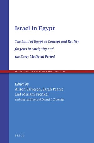 Cover Israel in Egypt: The Land of Egypt as Concept and Reality for Jews in Antiquity and the Early Medieval Period