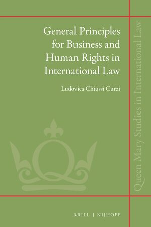 Cover General Principles for Business and Human Rights in International Law