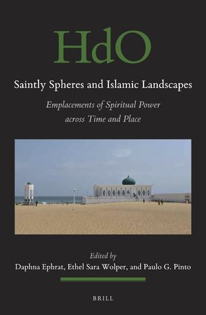 Cover Saintly Spheres and Islamic Landscapes