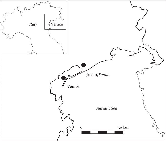 Chapter 5: The Insula Equilus: A Lagoon Community in the