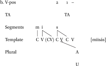 The Decomposition of Somali Nouns in: Brill's Journal of