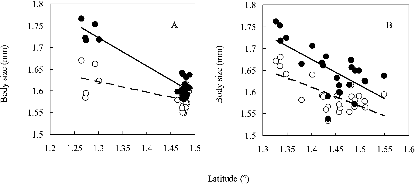Latitudinal variation in body size in Fejervarya limnocharis ...