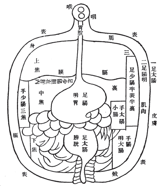 Transmitting Chinese Medicine In Asian Medicine Volume 8 Issue 2