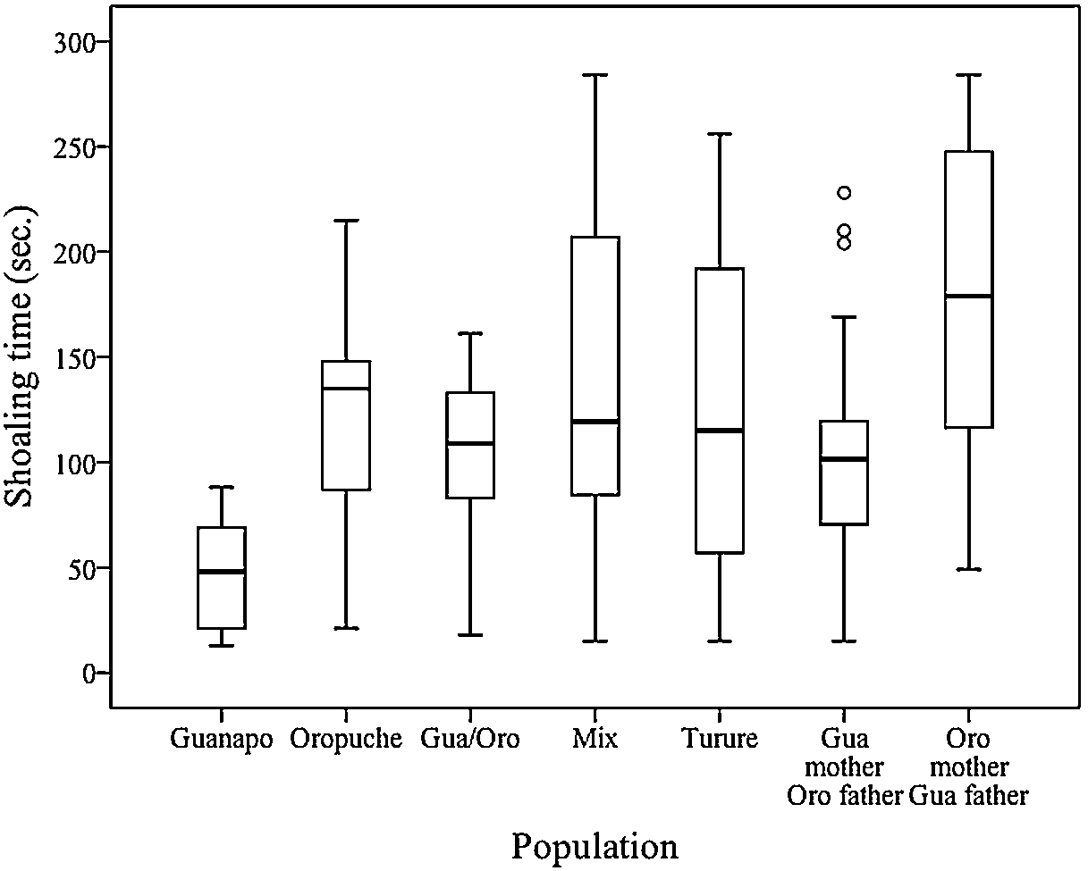 The influence of population mixing on newborn shoaling
