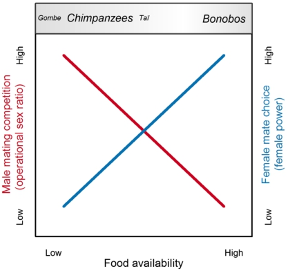Obstacles and catalysts of cooperation in humans, bonobos, and