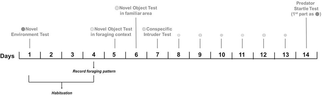 Does the use of a multi-trait, multi-test approach to