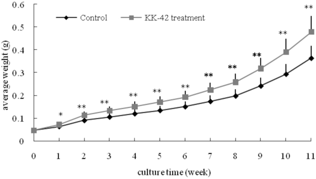 A shortening effect of KK-42 on the moult cycle of juvenile