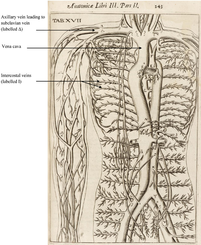 Anatomy, Bloodletting and Emblems in: Early Science and