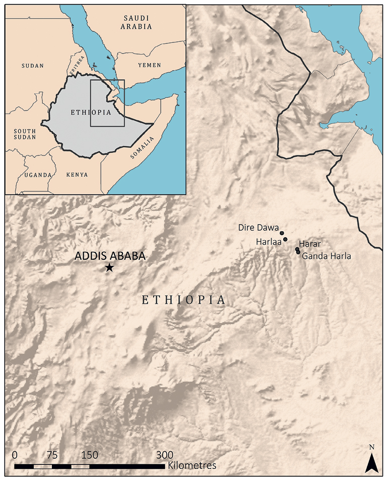 Animal Economies And Islamic Conversion In Eastern Ethiopia