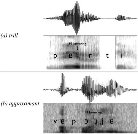 The Phonetics of r-Deletion in Samothraki Greek in: Journal of Greek