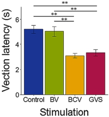Vection Latency Is Reduced by Bone-Conducted Vibration and