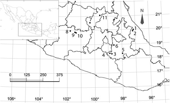Soil nematode abundance and diversity from four vegetation
